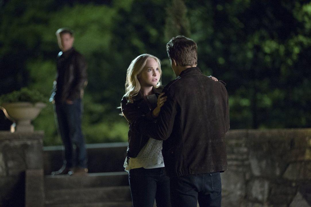 Muss sich Alaric (Matthew Davis, l.) eingestehen, dass zwischen Caroline (Candice King, M.) und Stefan (Paul Wesley, r.) immer noch tiefe Gefühle vo... - Bildquelle: Warner Bros. Entertainment, Inc.