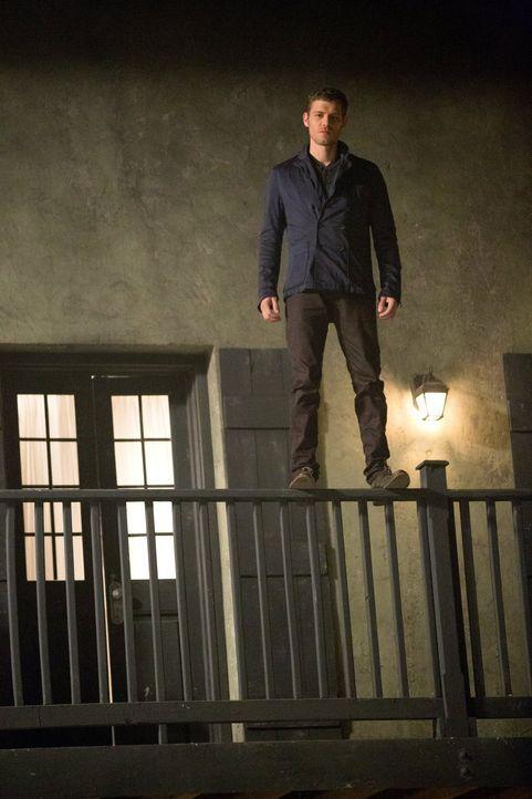 Wenn alle glauben, am Abgrund zu stehen, hat Klaus (Joseph Morgan) schon einen neuen Plan ... - Bildquelle: Warner Bros. Television