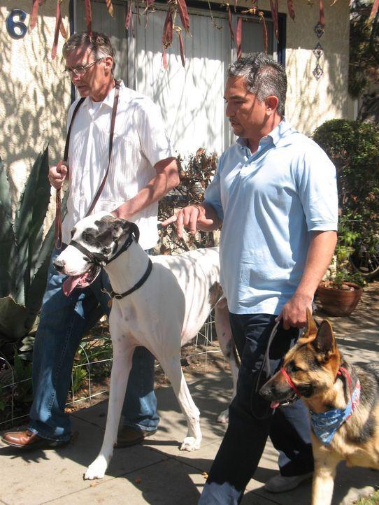 Familie Moore hat große Probleme mit ihrer 65 Kilo schweren Deutschen Dogge Bacchus. Kann der Hundeflüsterer Cesar Millan (r.) helfen? - Bildquelle: Rive Gauche Intern. Television