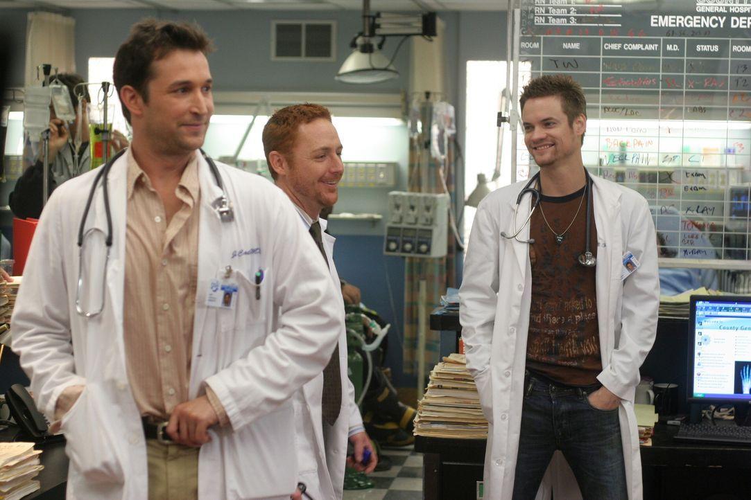 Freude im County: Carter (Noah Wyle, l.), Morris (Scott Grimes, M.) und Ray (Shane West, r.) ... - Bildquelle: WARNER BROS
