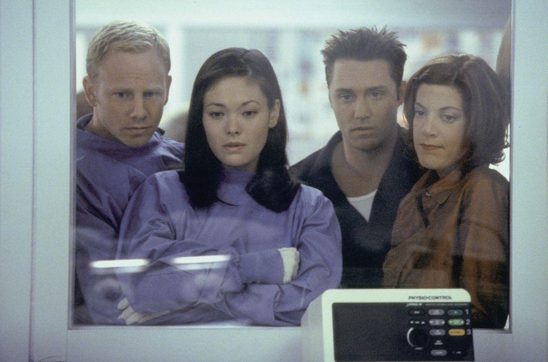 Janet (Lindsay Price, 2.v.l.) und Steve (Ian Ziering, l.) sehen das Ergebnis ihrer Affäre nun schwarz auf weiß. Was werden Noah (Vincent Young, 2.v.... - Bildquelle: Paramount Pictures