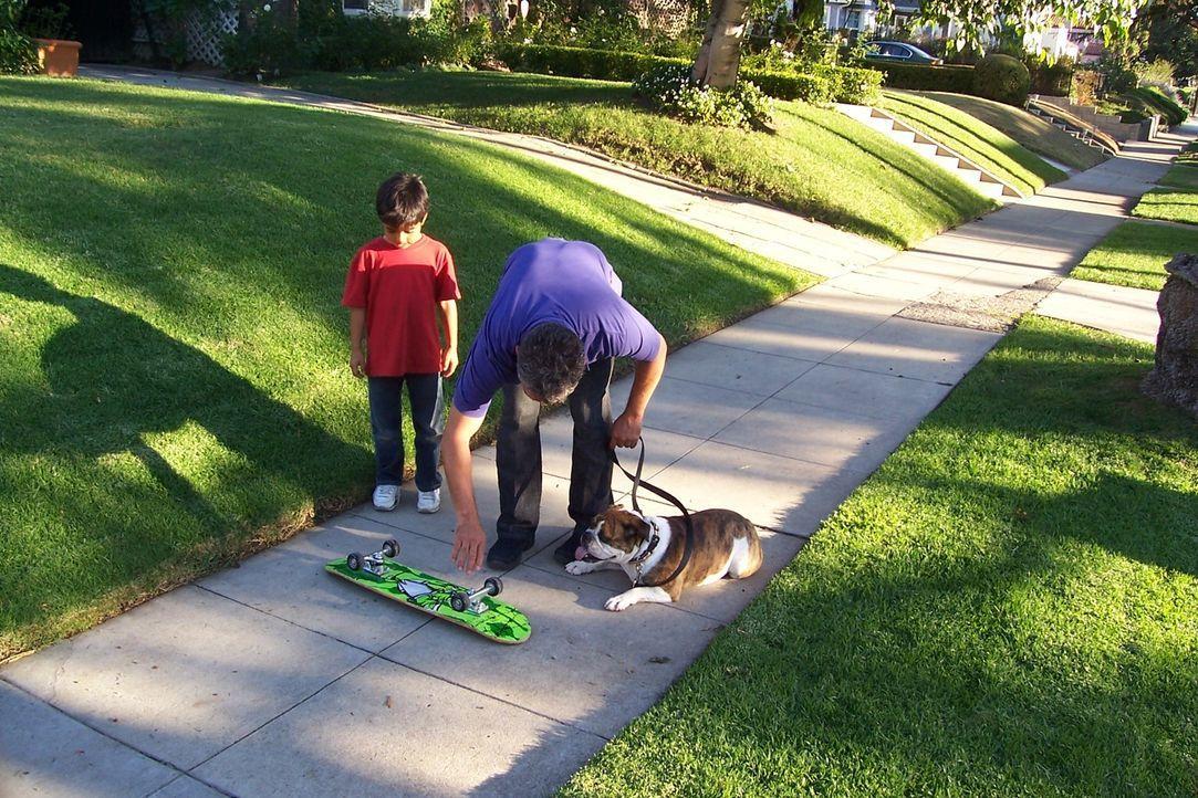 Die Bulldogge Matilda ist ein ganz besonderer Fall: Die Hündin vernascht gerne Skateboards und genau das will ihr der Hundeflüsterer Cesar Millan (r... - Bildquelle: Rive Gauche Television