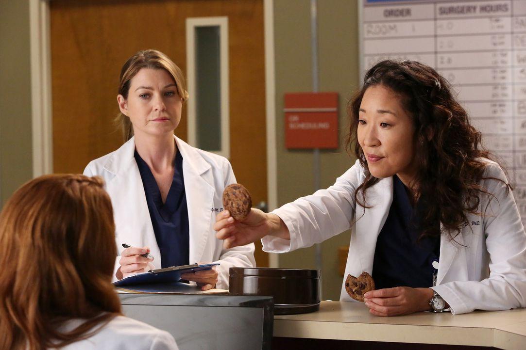 Neue Herausforderungen warten auf Cristina (Sandra Oh, r.), Meredith (Ellen Pompeo, M.) und April (Sarah Drew, l.) ... - Bildquelle: ABC Studios