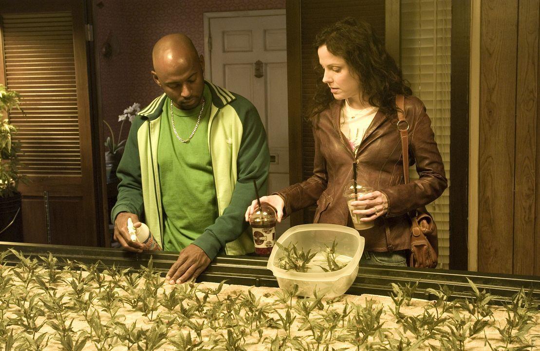 Nancy (Mary-Louise Parker, r.) gesteht Conrad (Romany Malco, l.), dass Peter und sie verheiratet sind und sie damit eine Art Versicherung gegen die... - Bildquelle: Lions Gate Television