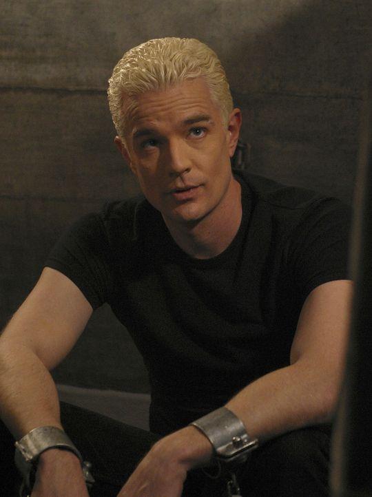 Obwohl der beseelte Spike (James Marsters) geläutert scheint, steht er immer noch unter dem Einfluss des Bösen ... - Bildquelle: TWENTIETH CENTURY FOX FILM CORPORATION