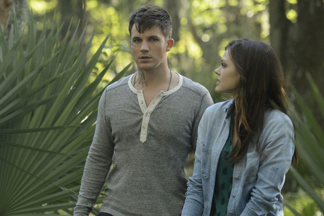 Gelingt es Roman (Matt Lanter, l.) und Emery (Aimeé Teegarden, r.) wirklich ihre Gefühle füreinander noch langer zu verstecken? - Bildquelle: 2014 The CW Network, LLC. All rights reserved.