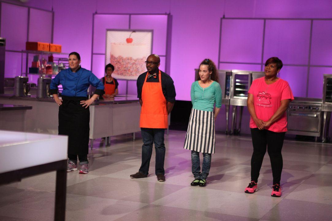Sind gespannt zu welchem Thema und mit welchen Zutaten sie atemberaubende Torten kreieren sollen: Die Kandidaten (v.l.n.r.) Sabrina Campbell, Edet O... - Bildquelle: 2016,Television Food Network, G.P. All Rights Reserved