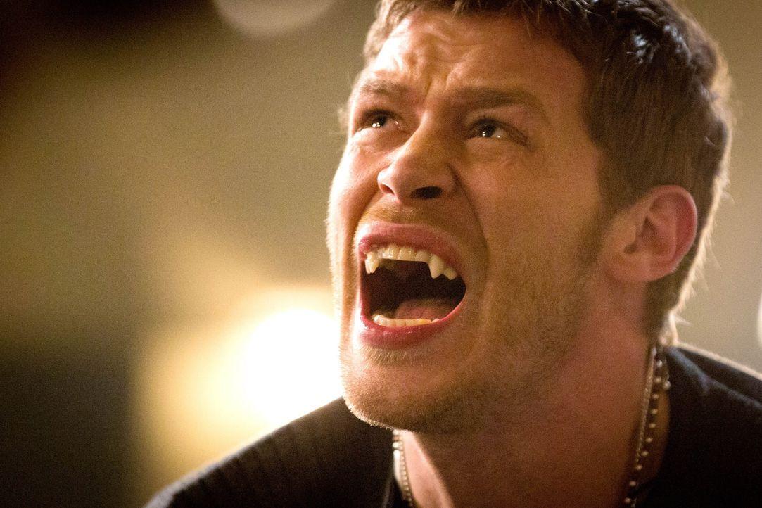 Klaus bricht vor Schmerz zusammen - Bildquelle: Warner Bros. Entertainment Inc.