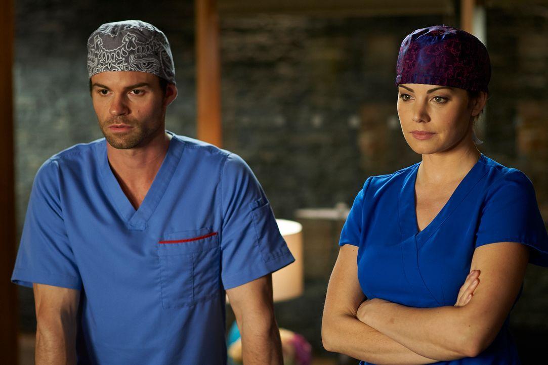 Das Berufsleben als Ärzte beeinflusst auch immer das Privatleben von Alex (Erica Durance, r.) und Joel (Daniel Gillies, l.) ... - Bildquelle: 2012  Hope Zee One Inc.