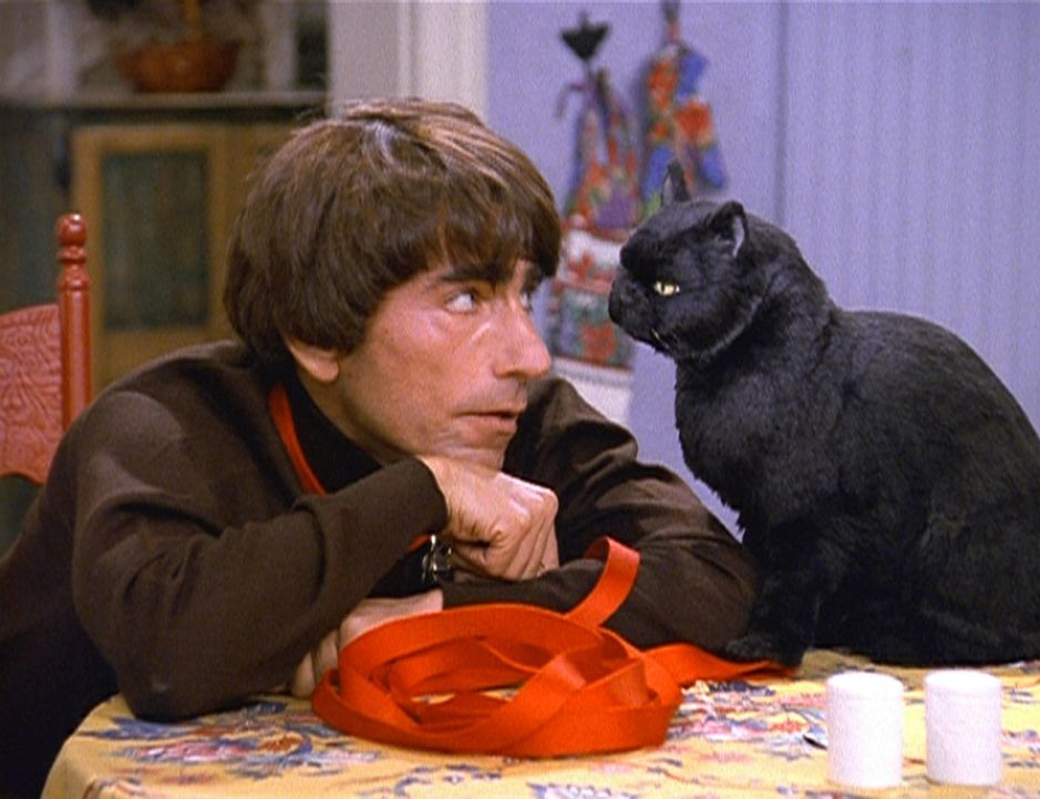 Salem (r.) hat sich ein Haustier gewünscht und entscheidet sich im Tierheim für den Menschenhund Sparky (Spencer Beglarian, l.) ... - Bildquelle: Paramount Pictures