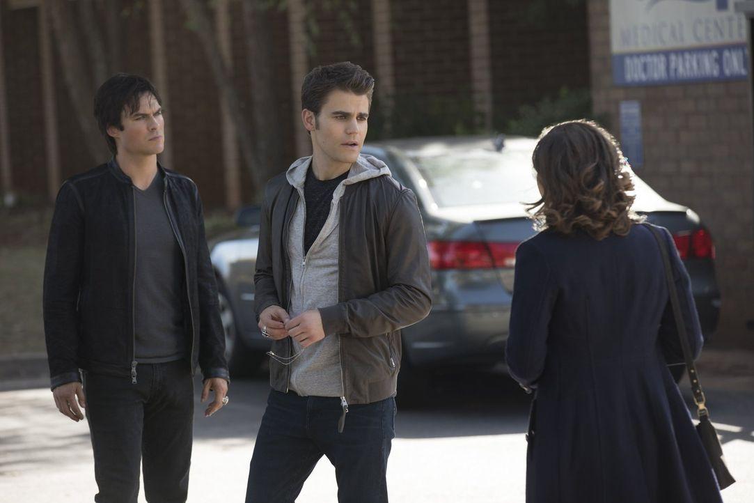 Damon (Ian Somerhalder, l.) und Stefan (Paul Wesley, M.) sind sich bei der Wahl ihrer Opfer nicht immer einig. Doch wie sieht es bei hübschen, junge... - Bildquelle: Warner Bros. Entertainment, Inc.