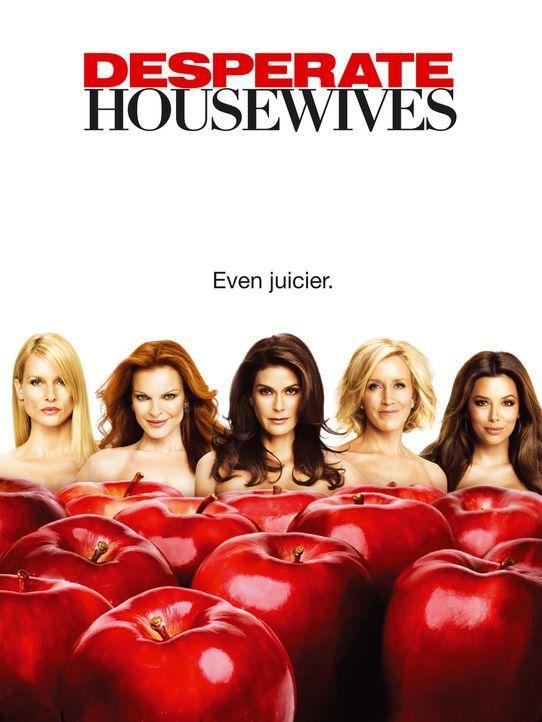 (5. Staffel) - Das scheinbar perfekte Leben amerikanischer Hausfrauen: Lynette Scavo (Felicity Huffman, 2.v.r.), Bree Hodge (Marcia Cross, 2.v.l.),... - Bildquelle: ABC Studios