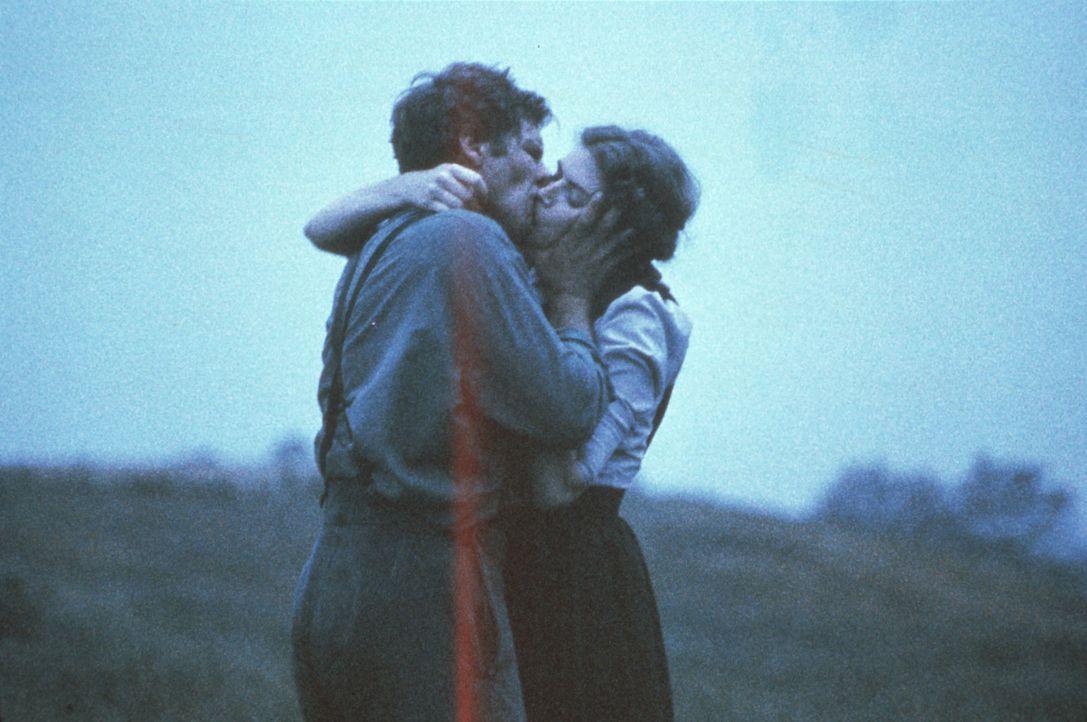 Tag für Tag wachsen Johns (Harrison Ford, l.) Gefühle für die schöne Rachel Lapp (Kelly McGillis, r.) ... - Bildquelle: Paramount Pictures
