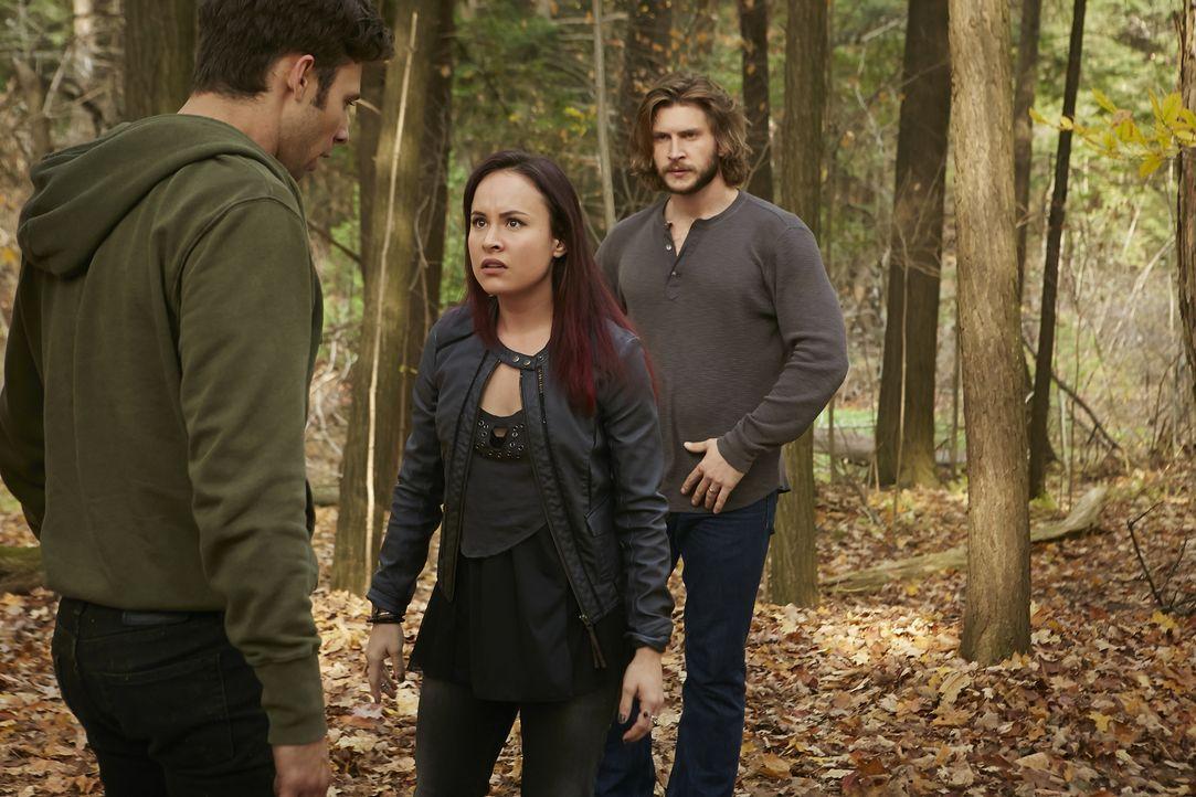 Während Nick (Steve Lund, l.) und der Rest des Rudels versuchen, Clay (Greyston Holt, r.) zu retten, will Paige (Tommie-Amber Pirie, M.) auch die kl... - Bildquelle: 2015 She-Wolf Season 2 Productions Inc.