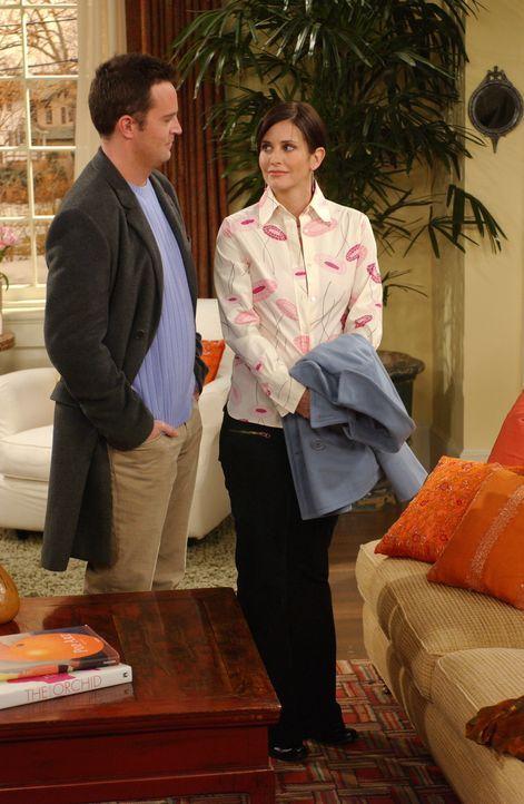 Monica (Courteney Cox, r.) und Chandler (Matthew Perry, l.) fahren nach Escrow, um sich ihr neues Haus noch einmal anzusehen ... - Bildquelle: 2003 Warner Brothers International Television