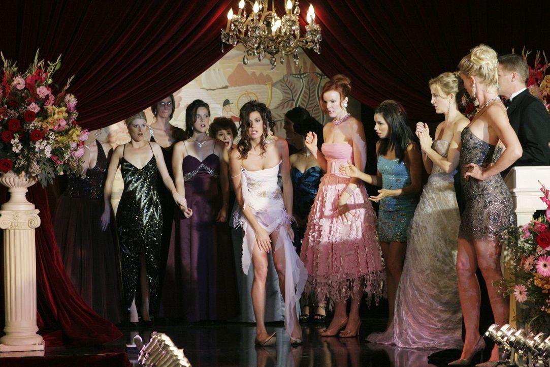 Fassungslos nehmen Susan (Teri Hatcher, M.), Bree (Marcia Cross, 5.v.r.), Gabrielle (Eva Longoria, 4.v.r.), Lynette (Felicity Huffman, 3.v.r.) und E... - Bildquelle: Touchstone Pictures