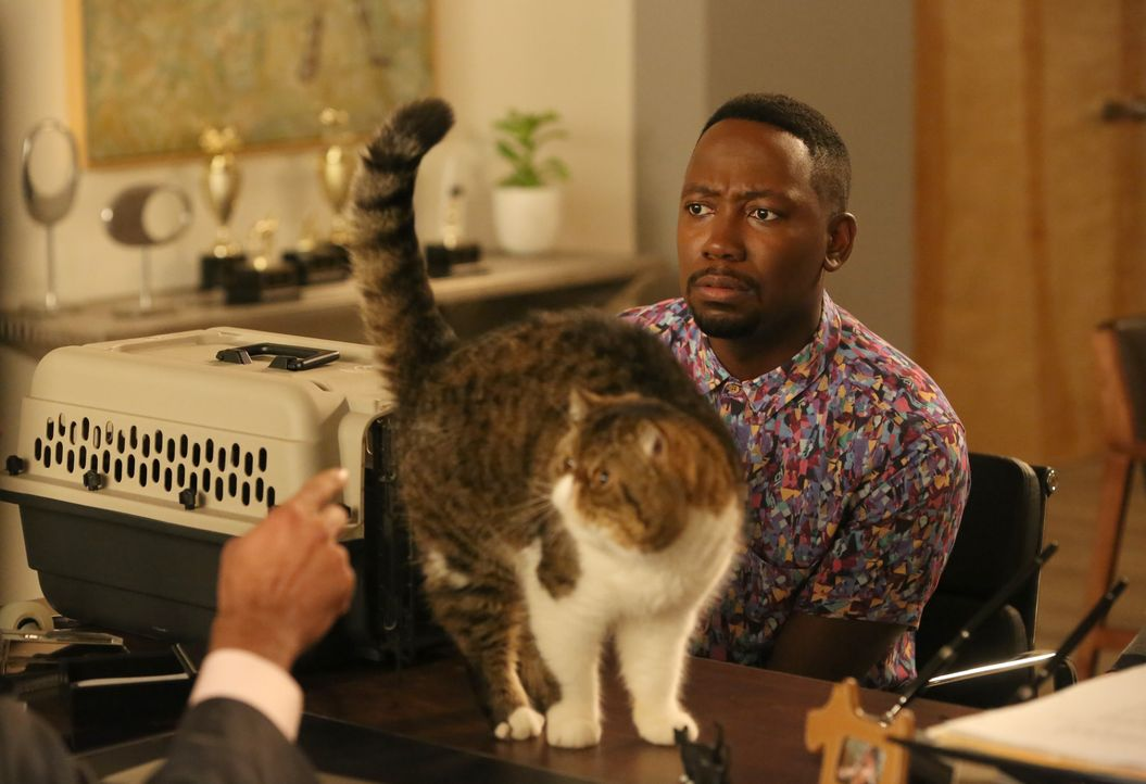 Während Winston (Lamorne Morris) seine Katze ganz groß rausbringen will, kommt es zwischen Jess und Nick zu einem Gespräch unerwarteten Gespräch ...... - Bildquelle: Patrick McElhenney 2016 Fox and its related entities. All rights reserved. / Patrick McElhenney