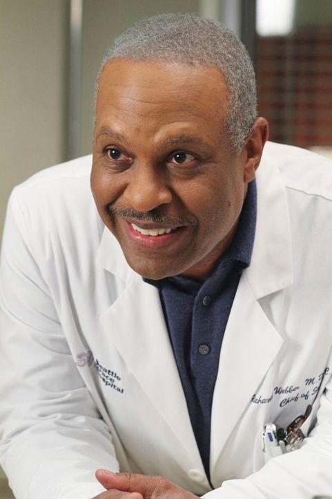 Derek führt eine alte Tradition wieder ein: Eine Vortragsreihe, bei der die Ärzte von ihren interessantesten Fällen berichten. Bailey, Callie und Ri... - Bildquelle: Touchstone Television