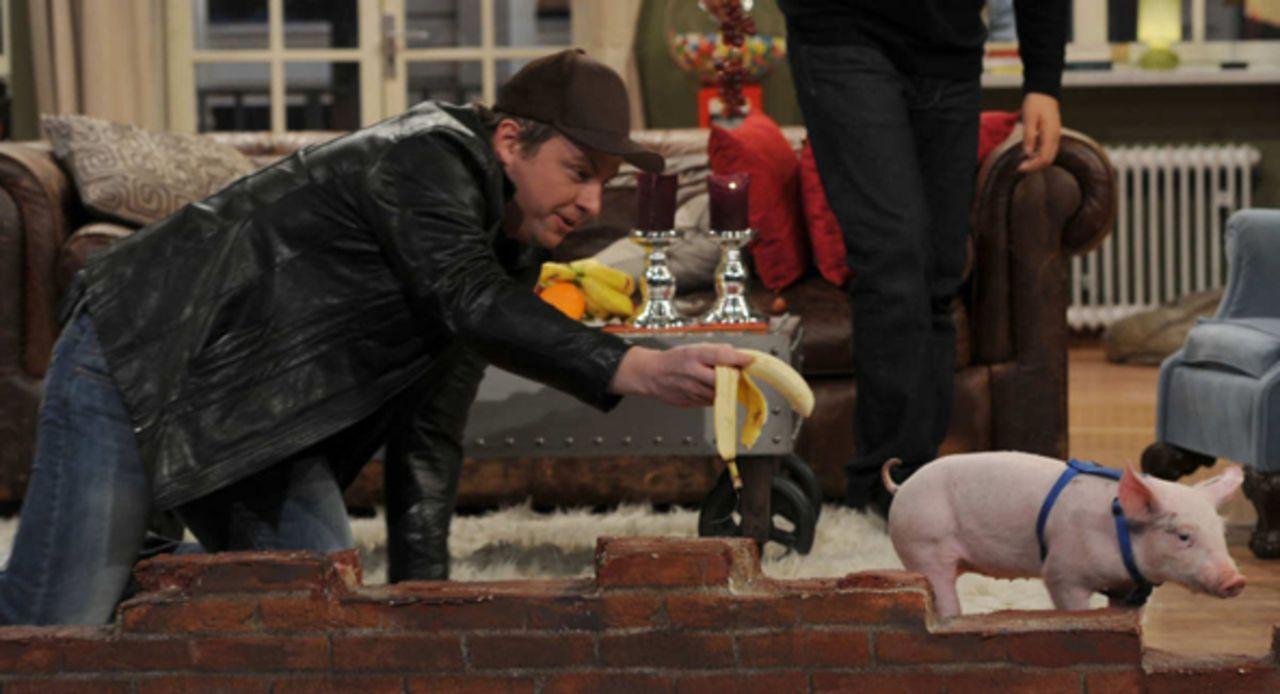 Schweinischer Besuch: Martin (Martin Klempnow) ... - Bildquelle: Patrik Stollarz SAT.1