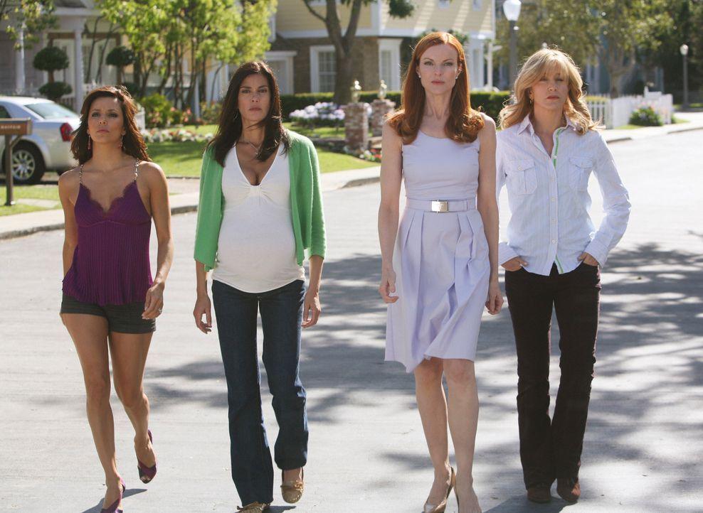 Wenn sie zusammenhalten, ist mit ihnen nicht zu spaßen: Lynette (Felicity Huffman, r.), Susan (Teri Hatcher, 2.v.l.), Gabrielle (Eva Longoria, l.) u... - Bildquelle: ABC Studios