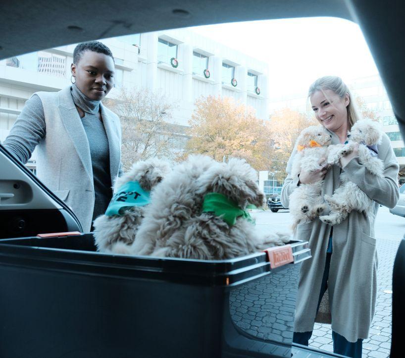 Mina (Shaunette Renée Wilson, l.) und Nic (Emily VanCamp, r.) hoffen mit Hundewelpen auf der Kinderstation für Freude sorgen zu können ... - Bildquelle: Guy D'Alema 2018 Fox and its related entities. All rights reserved. / Guy D'Alema