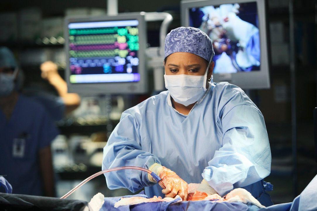Am Valentinstag müssen Bailey (Chandra Wilson) und ihre Kollegen des Seattle Grace eine Reihe verletzter Personen behandeln ... - Bildquelle: Touchstone Television