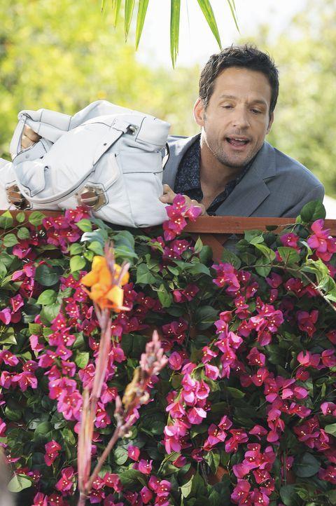 Ist von Jules Verhalten etwas irritiert: Grayson (Josh Hopkins) ... - Bildquelle: 2009 ABC INC.