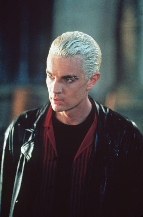 In ihrer Verzweiflung wendet sich Buffy an Spike (James Marsters), der schon zwei Jägerinnen besiegt und getötet hat. Sie will aus deren Fehlern ler... - Bildquelle: TM +   2000 Twentieth Century Fox Film Corporation. All Rights Reserved.