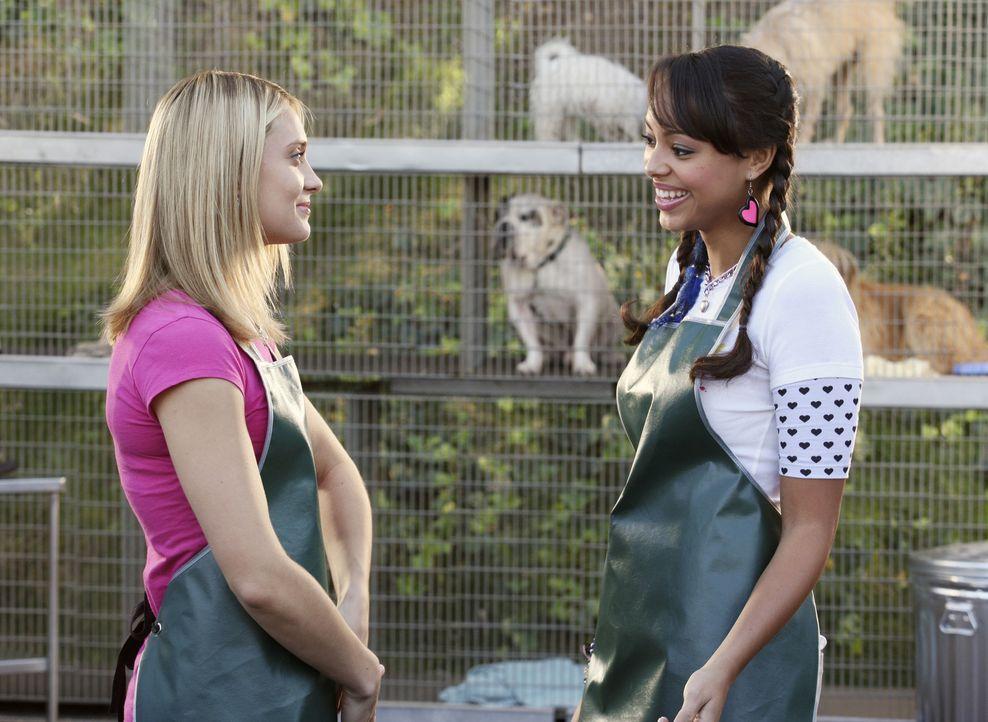 Genießen die Arbeit im Tierheim: Casey (Spencer Grammer, l.) und Ashleigh (Amber Stevens, r.) ... - Bildquelle: ABC Family