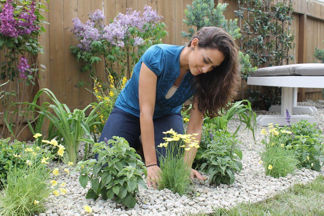 Sara (M.) hat ganz besondere Pläne mit dem Garten von Jodi und Ryan ... - Bildquelle: 2014, DIY Network/Scripps Networks, LLC. All RIghts Reserved.