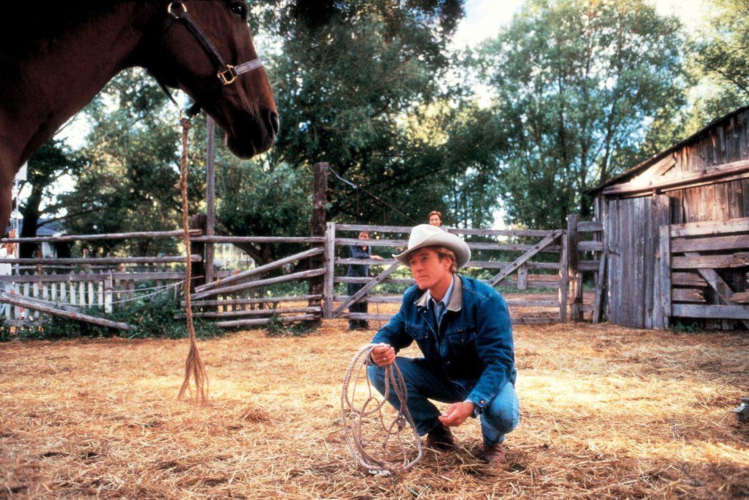 """Der """"Pferdeflüsterer"""" Tom Booker (Robert Redford) gibt sich alle Mühe, um das verstörte Pferd Pilgrim zu heilen ... - Bildquelle: Touchstone Pictures"""