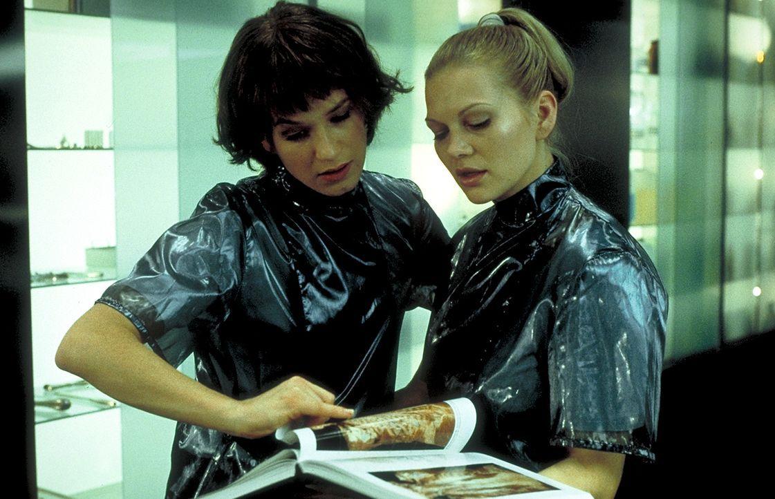 Als Jahrgangsbeste werden die Medizinstudentinnen Gretchen (Anna Loos, r.) und Paula (Franka Potente, l.) zu einem elitären Anatomie - Forschungsleh... - Bildquelle: Columbia Pictures
