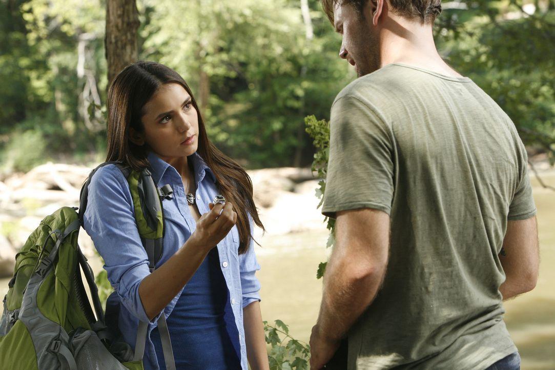 Elena (Nina Dobrev, l.) überredet Alaric (Matt Davis, l.), sich mit ihr auf die Suche nach Stefan zu machen, um ihn zu retten. - Bildquelle: © Warner Bros. Entertainment Inc.