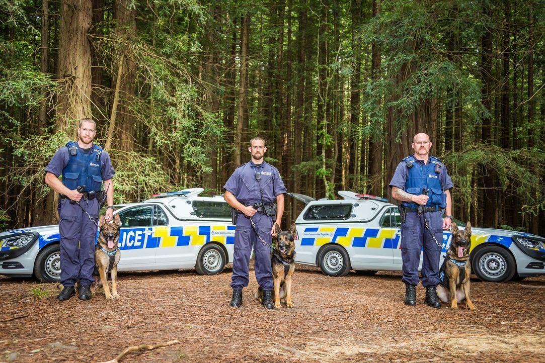 Luke und Cato vom Delta-Hundeteam werden zu einem nächtlichen Einsatz gerufe... - Bildquelle: Greenstone TV Ltd