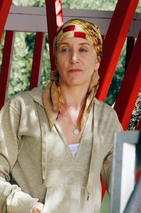 Lynette (Felicity Huffman) ist besorgt, dass der Nachbarschaftsverein auch ihr Baumhaus abreisen lässt - der einzige Ort, an dem nicht über ihre Kra... - Bildquelle: ABC Studios