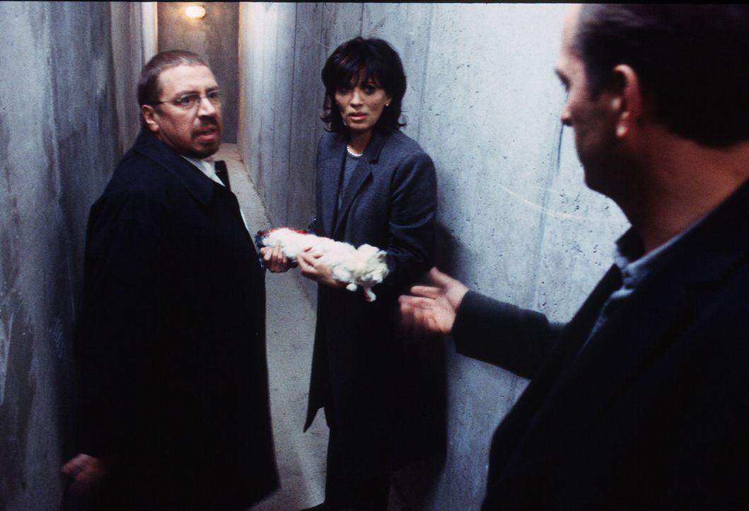 Leonard (Herbert Knaup, r.) und David (Armin Rohde, l.) finden Nora (Iris Berben, M.) mit einer toten Katze im Arm im Keller. - Bildquelle: Stephan Rabold Sat.1