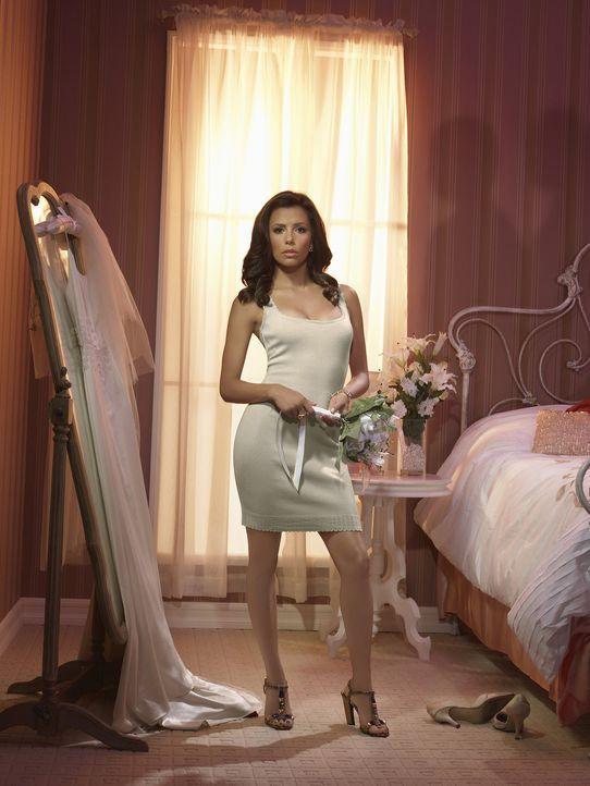 (4. Staffel) - Wünscht sich einen Mann, der sie auf Händen trägt: Gabrielle Lang (Eva Longoria) ... - Bildquelle: ABC Studios