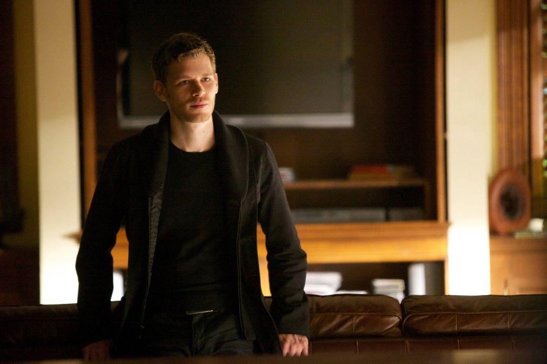 Was erhofft sich Klaus (Joseph Morgan) von Tylers Abwesenheit? Wird er versuchen, bei Caroline zu landen? - Bildquelle: Warner Brothers