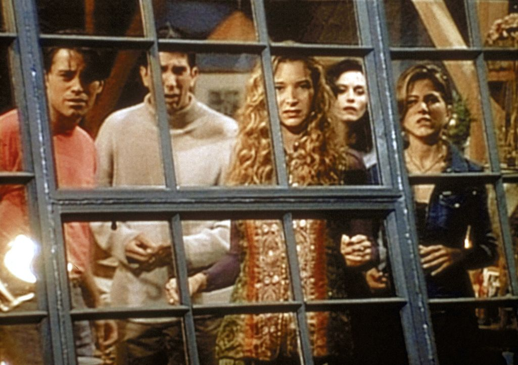 Joey (Matt LeBlanc, l.), Ross (David Schwimmer, 2.v.l.), Phoebe (Lisa Kudrow, 3.v.l.), Monica (Courteney Cox, 2.v.r.) und Rachel (Jennifer Aniston,... - Bildquelle: TM+  2000 WARNER BROS.