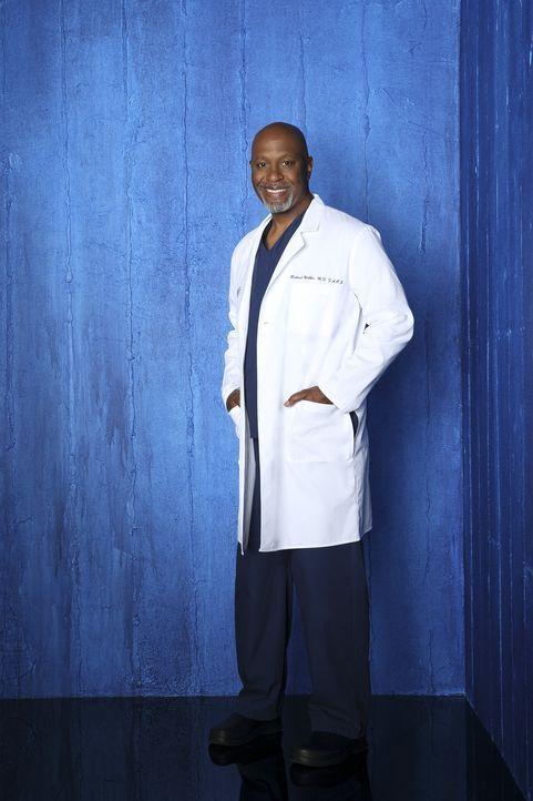 (9. Staffel) - Beruflich weiß Dr. Richard Webber (James Pickens, Jr.) immer, was er tut ... - Bildquelle: ABC Studios