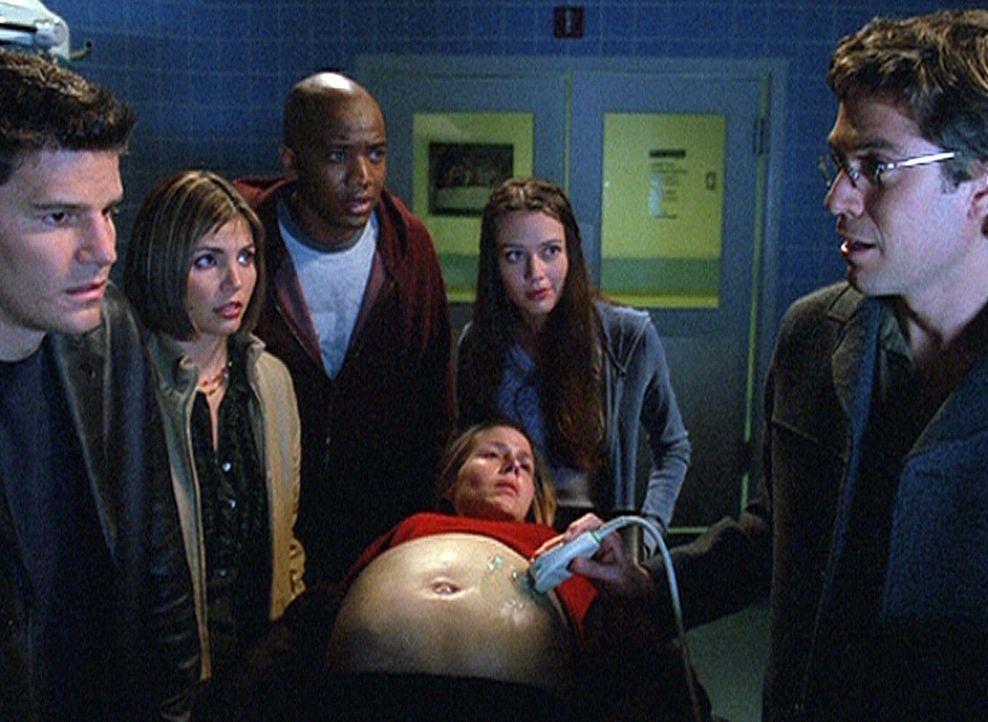 (v.l.n.r.) Angel (David Boreanaz), Cordelia (Charisma Carpenter), Gunn (J. August Richards), Darla (Julie Benz), Fred (Amy Acker) und Wesley (Alexis... - Bildquelle: 20th Century Fox. All Rights Reserved.