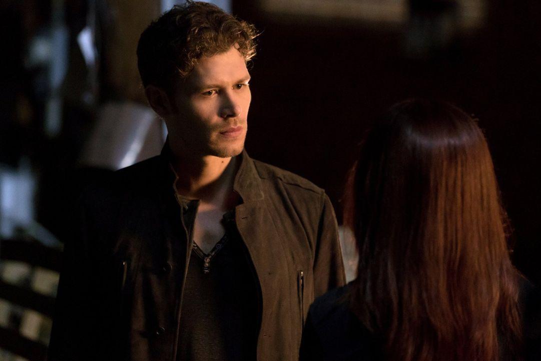 Während sich Klaus (Joseph Morgan) um die Spielchen seiner eifersüchtigen Geliebten kümmern muss, wollen die Styx einen Freund der Familie Mikaelson... - Bildquelle: Warner Bros. Entertainment Inc.