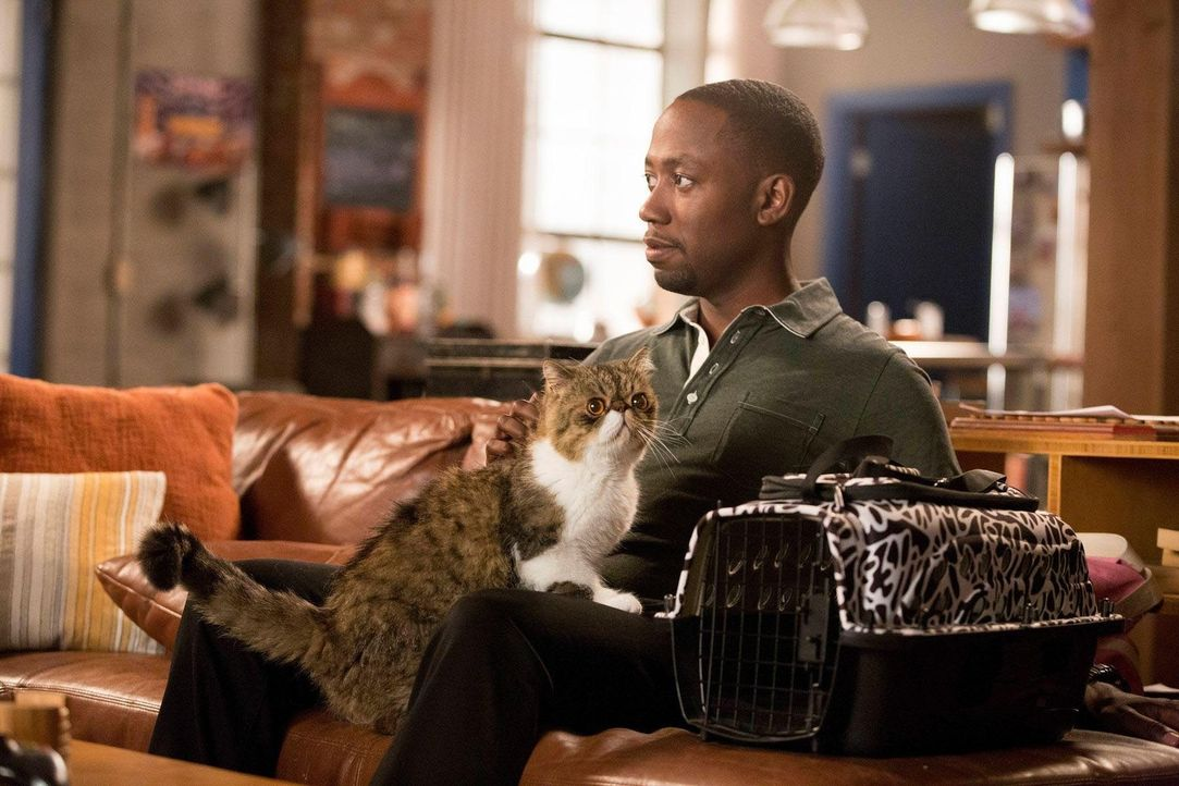 Als ob Daisys Fremdgehen nicht genug wäre, jetzt hat Winston (Lamorne Morris) auch noch deren Katze am Hals ... - Bildquelle: TM &   2013 Fox and its related entities. All rights reserved.