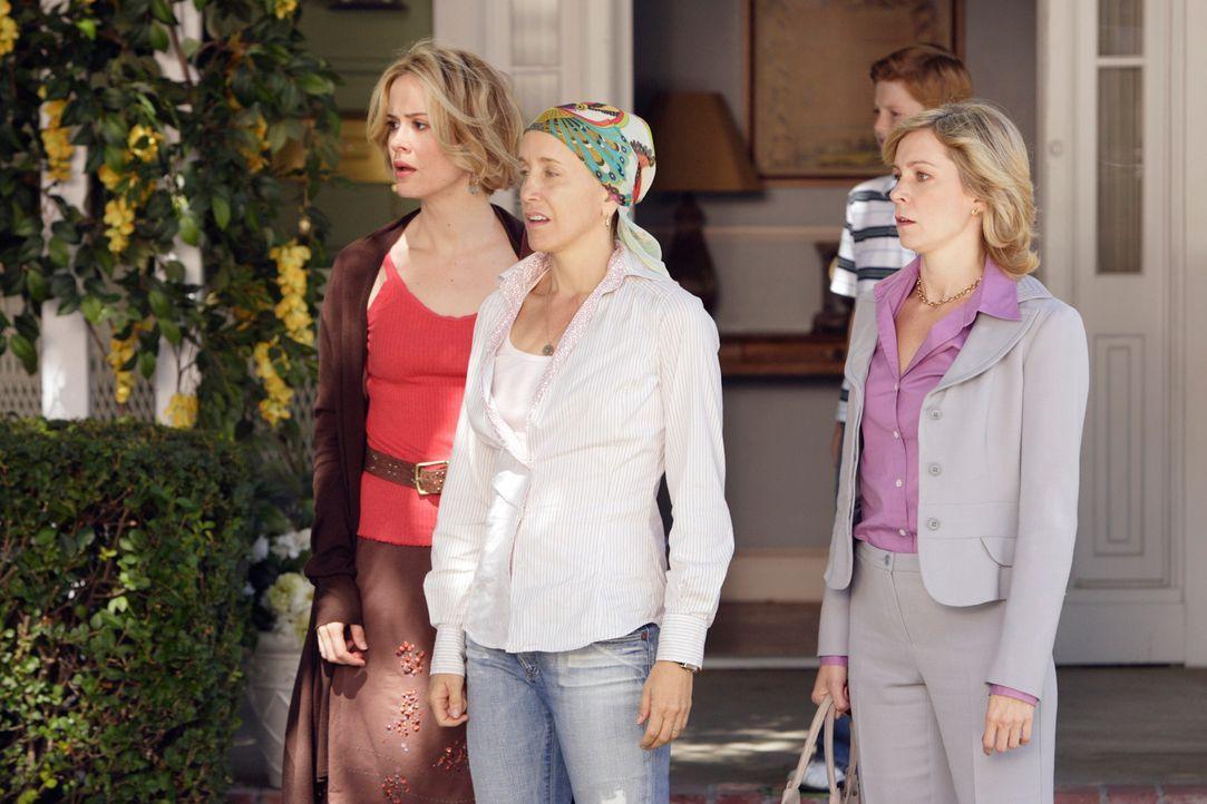 Lynette (Felicity Huffman, M.) versucht ihre Schwestern Lucy (Carrie Preston, r.) noch Lydia (Sarah Paulson, l.) dazu zu bringen, Stella aufzunehmen... - Bildquelle: ABC Studios
