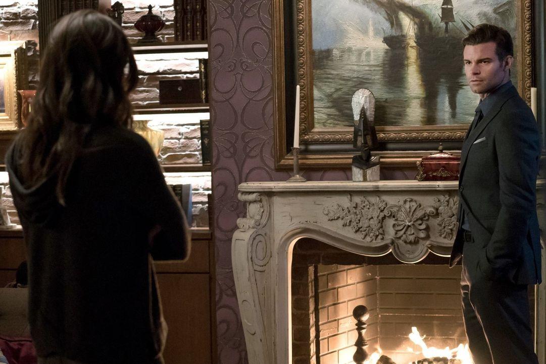 Als Hayley (Phoebe Tonkin, l.) vorschlägt Aya und die Strix auszulöschen, macht Elijah (Daniel Gillies, r.) ihr klar, welche Geschichte und Bedeutun... - Bildquelle: Warner Bros. Entertainment, Inc.