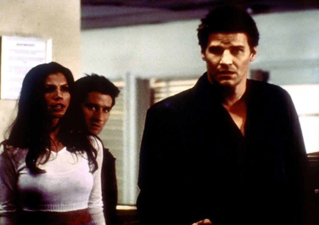 Cordelia (Charisma Carpenter, l.) und Doyle (Glenn Quinn, M.) kommen aus dem Staunen nicht mehr heraus. Angel (David Boreanaz, r.) ist auf einmal so... - Bildquelle: TM +   2000 Twentieth Century Fox Film Corporation. All Rights Reserved.