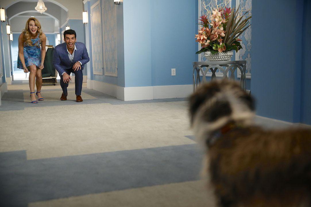 Petra (Yael Grobglas, l.) und Rafael (Justin Baldoni, r.) stehen vor einem Problem: Sie sollen sich um David Bisbals Hund kümmern - doch dieser büxt... - Bildquelle: 2014 The CW Network, LLC. All rights reserved.