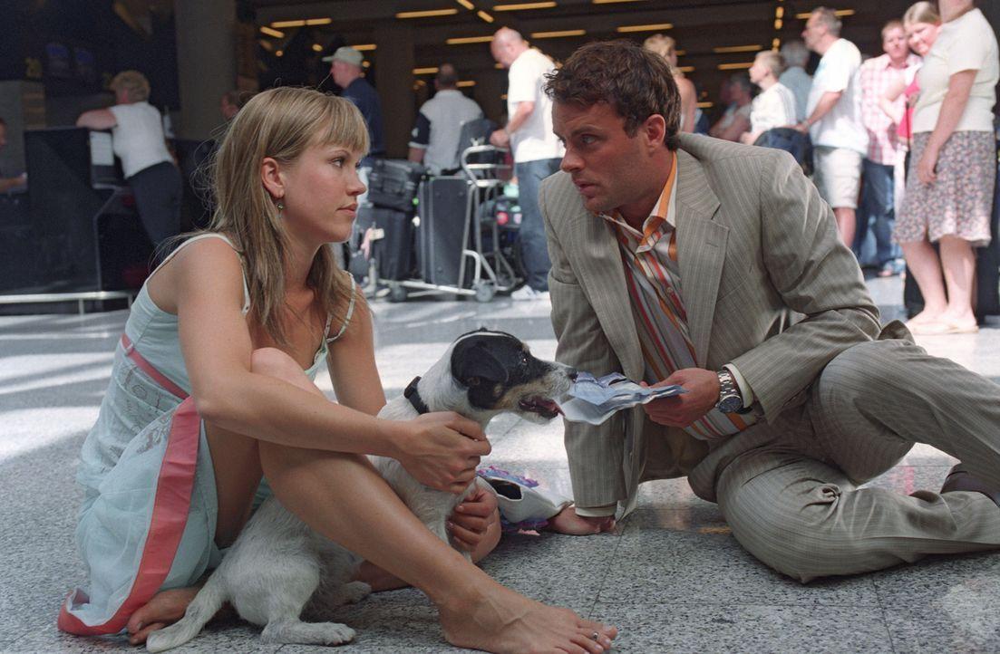 Auf dem Flughafen hat Isabelle (Wolke Hegenbarth, l.) einen Zusammenstoß mit dem schnöseligen Geschäftsmann Daniel (André Röhner, r.). Im Geran... - Bildquelle: Sat.1