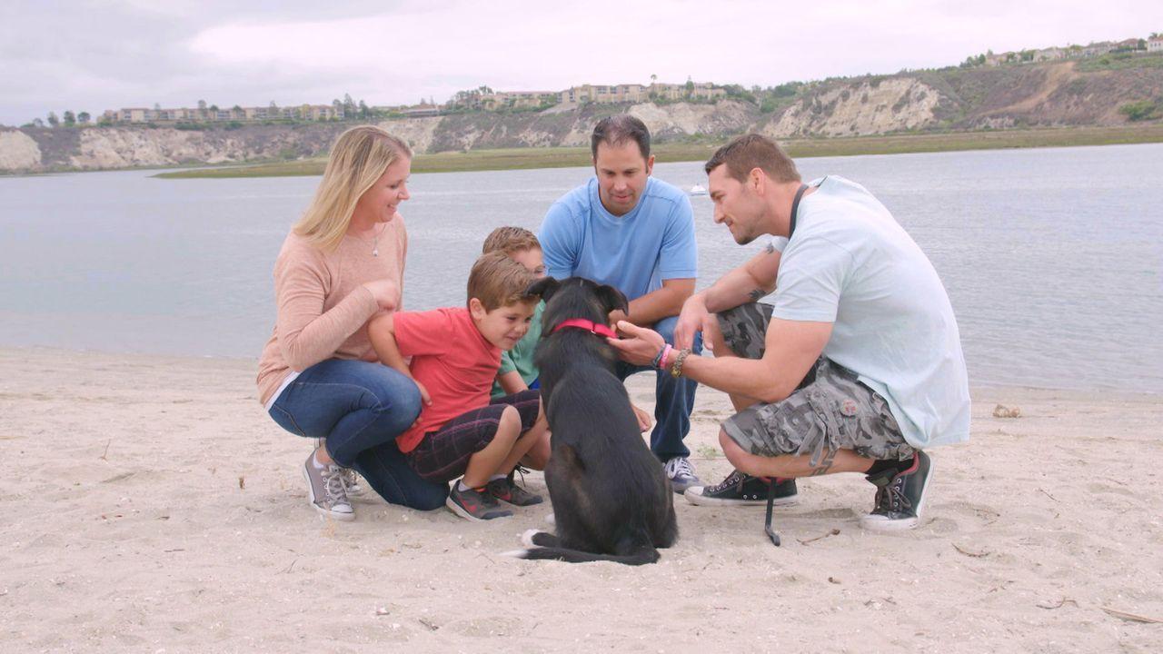 (3. Staffel) - Der Hundetrainer Brandon McMillan (r.) hat es sich zur Aufgabe gemacht, schwer vermittelbare Hunde aus Tierheimen zu retten, sie zu t... - Bildquelle: 2015 Lucky Dog. All Rights Reserved.