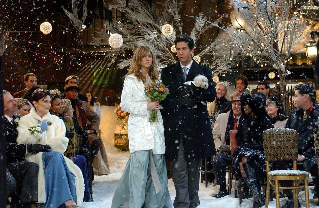 Freuen sich für ihre Freunde: Rachel (Jennifer Aniston, l.) und Ross (David Schwimmer, r.) ... - Bildquelle: 2003 Warner Brothers International Television